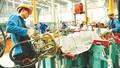 Bộ Công Thương công bố dự thảo quy định 'hàng Việt Nam'