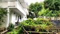 Vụ tố cáo xâm phạm chỗ ở tại Phú Quốc, Kiên Giang: Dấu hiệu cho thuê tài sản bất hợp pháp