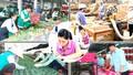 20 năm nhìn lại Luật Doanh nghiệp: Sửa luật trên tư duy kinh tế thị trường
