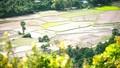 """Cơ chế nào """"mở lối"""" cho thị trường đất nông nghiệp?"""