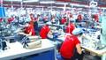 EU, Mỹ không ngưng nhập khẩu dệt may Việt Nam
