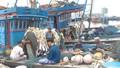 Không lắp thiết bị giám sát hành trình, tàu cá không được ra khơi