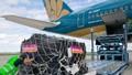Vận chuyển hàng - 'phao cứu sinh' của doanh nghiệp vận tải