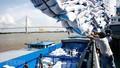 Xuất khẩu gạo tháng 4/2020: Sau một ngày, DN đăng ký chạm hạn ngạch 400 ngàn tấn