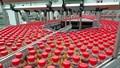 Khám phá công nghệ sản xuất 48.000 chai Trà Dr Thanh chỉ trong một giờ