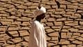 """Hơn 3 tỷ người trên thế giới sẽ """"chết nóng"""" trong vòng 50 năm tới"""