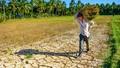 Đồng bằng sông Cửu Long: Vì sao cảnh báo khô hạn trong mùa mưa lũ?