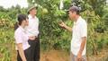 Vốn chính sách hỗ trợ nông dân ven đô thoát nghèo