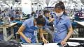 Thị trường lao động sẽ phục hồi nhanh