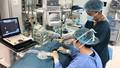 Vinmec công bố nghiên cứu đột phá về giảm đau trong mổ tim hở trẻ em