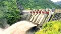 Bao nhiêu đất rừng mất vì thủy điện?