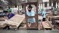 Triển vọng xuất khẩu nông lâm thủy sản