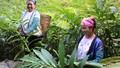 Quỳnh Nhai bứt phá trong công tác giảm nghèo