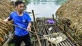 Thanh Hóa: Vì sao cá lồng chết hàng loạt trên sông Mã?