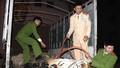 Khởi tố tài xế vận chuyển cá thể hổ 120kg, truy tìm chủ nhân
