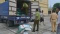 Thanh Hóa: Bắt 3,5 tấn mì chính không rõ nguồn gốc