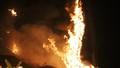 Hỏa hoạn thiêu 10 ha rừng thông, khiến một người phải cấp cứu