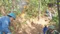 Hai vụ cháy thiêu trụi rừng thông và ki ốt bán hàng