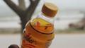 Nghệ An: Phát hiện ruồi trong chai Number One