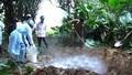 Nghệ An xuất hiện và dập kịp thời 2 ổ dịch H5N1