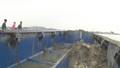 Đang kiểm định mẫu chất thải đổ tại cảng Nghi Sơn