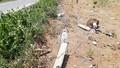 Xe con tông cột mốc trên đường, 5 người thương vong