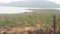 Khởi tố Trưởng Ban QLRPH Quỳnh Lưu và 3 cán bộ bị gây thất thoát hơn 700 triệu đồng