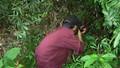 Một người đàn ông bất ngờ dính đạn tử vong khi đi hái rau rừng