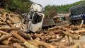 Khởi tố vụ lật xe chở gỗ khiến 7 người chết ở Thanh Hóa