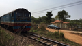 Hai mẹ con thương vong cạnh hành lang đường sắt
