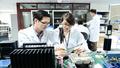 Tăng 4 hạng, Viettel lọt Top 3 môi trường làm việc tốt nhất Việt Nam