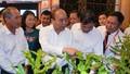 Thủ tướng Nguyễn Xuân Phúc: Mắc ca Việt Nam phải có thương hiệu riêng ra thế giới