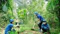 Trồng 1 tỷ cây xanh phải thực chất, tránh phô trương, lãng phí