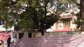 Sập tường trường mầm non ở Hà Nội, một người thiệt mạng