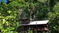 Bỏ biệt thự triệu USD Hà Nội, 'đại gia' về rừng ở ẩn