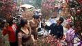Thủ tướng đồng ý Tết Nguyên đán Canh Tý nghỉ 7 ngày