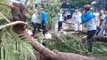 Nhân chứng kể phút cây đổ đè 13 học sinh, 1 em tử vong ở TP HCM