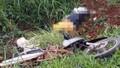 Xe tải húc văng xe máy xuống vực, 1 phụ nữ tử vong