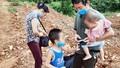 Gia đình 4 người quê Thái Bình xin đi cách ly tập trung