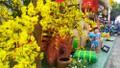 Loạt chương trình ý nghĩa mừng Tết Nguyên đán 2021 tại TP HCM