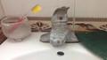 Giữa Thủ đô: Đi vệ sinh không dám dội nước, đến cơ quan 'tắm nhờ'