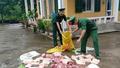 Quảng Ninh: Liên tiếp bắt giữ nhiều vụ nhập lậu lợn từ biên giới