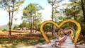 """Công viên hoa Hồ Yên Trung: Điểm """"check –in"""" lý tưởng tại TP Uông Bí"""