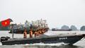 Quảng Ninh: Di chuyển hơn 16.000 ngư dân trên biển về nơi tránh trú bão an toàn