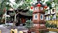 Ngôi chùa nổi tiếng cầu an, dâng sao giải hạn đầu năm ở Hà thành