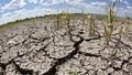 Ứng phó tác động của biến đổi khí hậu: Cần nhiều giải pháp về quản lý nhà nước