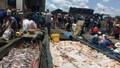 Cá lại chết hàng loạt trên sông La Ngà (Đồng Nai)