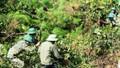 Quân khu 4 căng mình dập lửa, cứu rừng