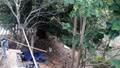 Nam thanh niên bế bé gái ra sau vườn giở trò dâm ô