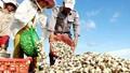 Thêm 3 loại thủy sản được phép xuất khẩu sang Trung Quốc